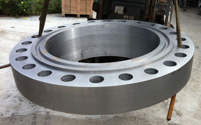 Stainless Steel 317 Pipe Flanges